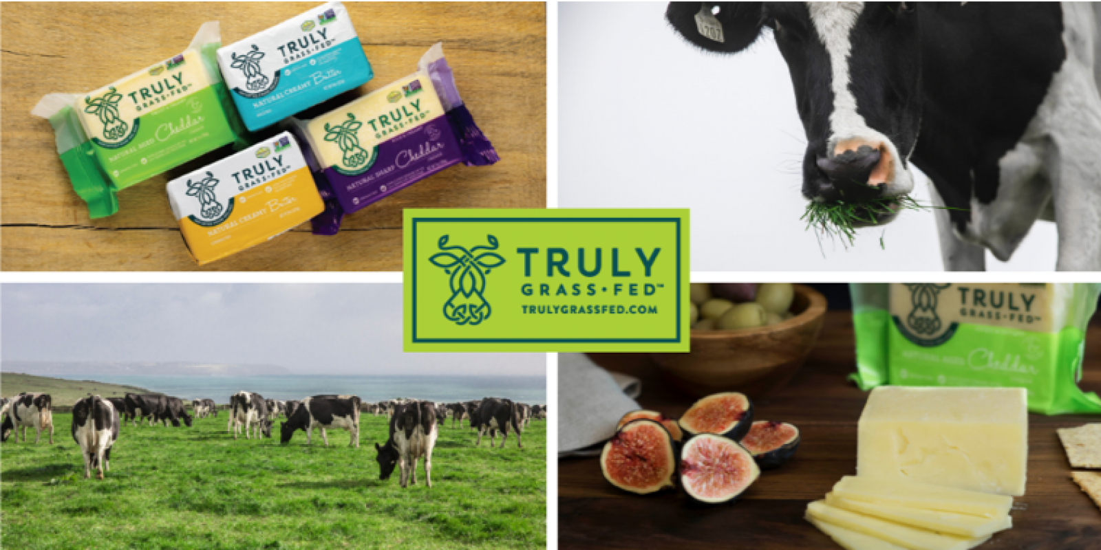 Collage of 4 images featuring Truly Grass Fed imagery. From top left: image of Truly Grass Fed butter and cheese; close-up of cow eating grass; group of cows grazing in a green field; close-up of Truly Grass Fed cheese sitting on a cheese board. In the middle of the collage is the Truly Grass Fed logo.
